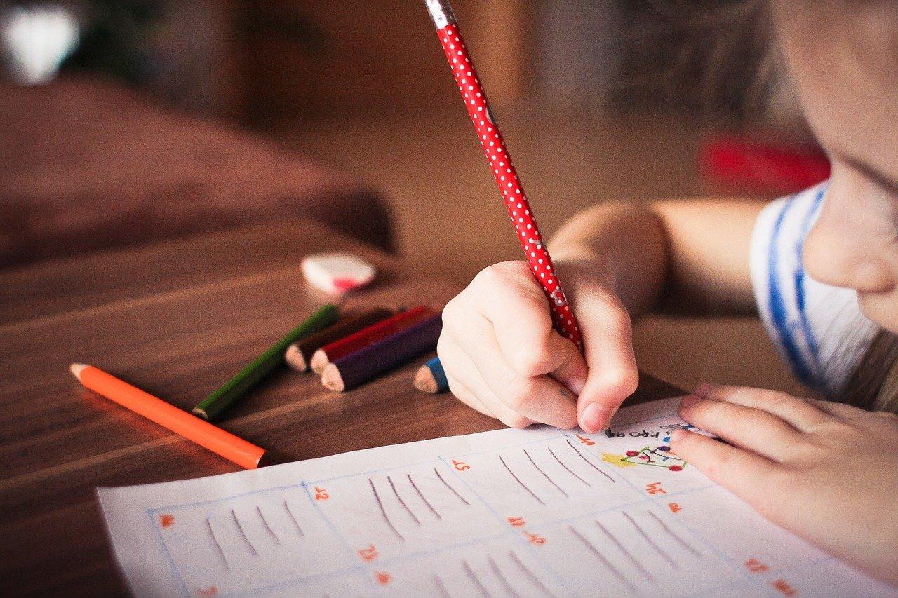 student, school work, homework